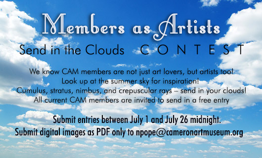 Members as Artists Contest